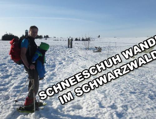 Schneeschuh Wandern im Schwarzwald