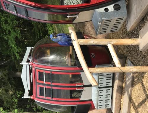 Unsere #Gondeln beim #Lifthisli #Kernhof in #Seebach sind heute bei #spiegel.de online. Bei #traumhafter #Aussicht zur #Hornisgrinde und #Mummelsee genießen #Wanderer vom #Karlsruher#Grat oder #Bosensteiner#Almpfad die #Auszeit beim #Vesper in ausrangierten #Liftgondeln. Wurstsalat, Käsesalat, Bauernwürste, Brezel, Landjäger der #Metzgerei #Fischer kalte Pizza- Flammkuchenschnitte, Kuchen, leckeres #Hofeis und eine große Auswahl an Getränken. Weiters im Angebot #Team #Events #Firmenevents mit #Schnapsprobe# in der #hauseigenen #Schaubrennerei bei einem #außergewöhnlichen #Ambiente nahegelegen dem #Nationalpark #Nordschwarzwald.
